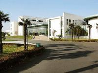崇明东滩国际会议中心项目