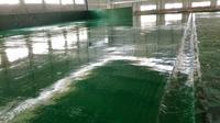 力行环保有限公司环氧薄涂地坪项目