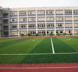 人造草足球场施工建设