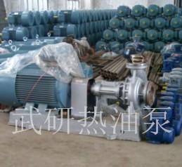 耐磨耐弱腐蚀高温导热油泵