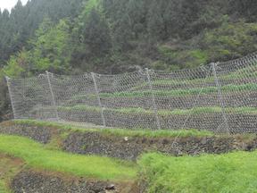 RXI075被动防护网