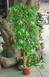 仿真竹、仿真绿竹、仿真佛肚竹