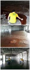 东莞塑胶厂房环氧自流平地坪施工项目