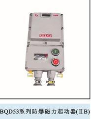BQD53防爆磁力起动器 (IIB IIC)