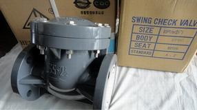 H44X-PVC旋启式塑料止回阀