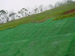 张家口三维植被网护坡,三维植被网规格