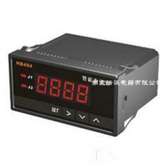 数显电压表智能电压表HB404