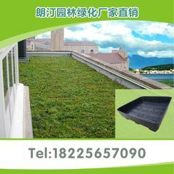 市政屋顶绿化可移动小灌木种植蓄水花盆高度15cm 保8年