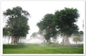 供应园林喷灌喷头