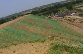 洪江三维植被网垫厂家价格