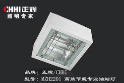高效节能专业油站灯MZH2201,平面灯,油站灯,正辉,泛光灯,场馆灯