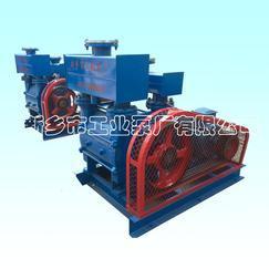 V法铸造专用真空泵2BE1-303