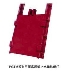 PGZ-1*1M铸铁闸门