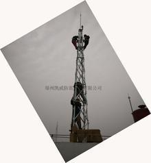 12米屋顶专用结构避雷针