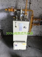 30KG水加热器气化炉