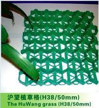 沪望HW塑料草格、草坪格、草坪砖