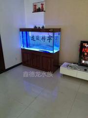 金刚玻璃鱼缸  鱼缸厂家