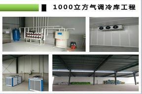 杭州、金华、温州、台州、湖州等地医药冷库安装2-8℃医药冷库