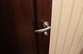 BEST室内门执手锁229-ve