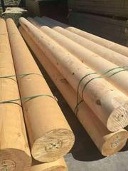 德州防腐木厂家批发、德州碳化木、德州防腐木凉亭