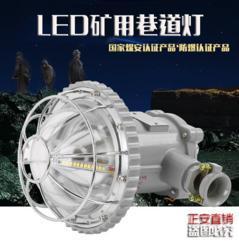 矿用隔爆型LED巷道灯30W/127V照明灯煤矿井下专用LED防爆灯