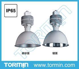 高效节能顶灯,高效顶灯,电厂照明灯具