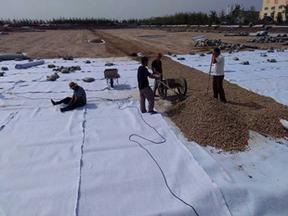 河道防渗铺设400g/m2一布一膜