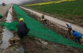 土工材料三维植被网护坡原理