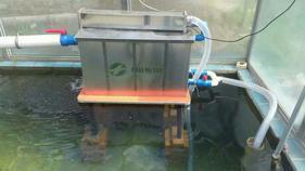 卡利净k.10000珠海别墅鱼池水处理