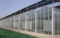 智能连栋温室建造