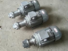 DHB-25/6.5点火泵、NYP3.6高粘度齿轮泵