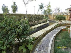 北京别墅绿化