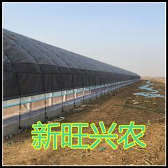 邯郸新旺兴农1000养殖大棚价格实惠低价促销