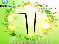 花卉大棚高效节水微灌 滴箭系统