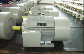 西门子交流电机原理,减速电机