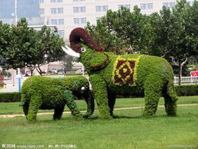 浙江雕塑 仿真植物大自然景观雕塑 拉丝玻璃钢雕塑