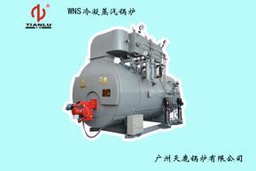 冷凝式节能型锅炉