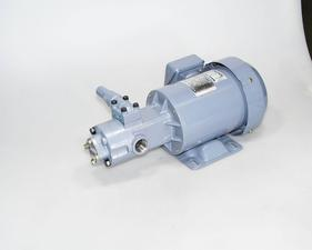 日泵齿轮泵