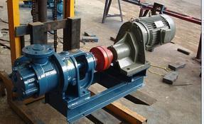NYP高粘度转子泵