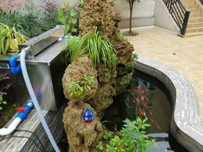 卡利净 10000庭院观赏鱼池自行排污过滤器