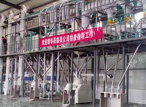 新型玉米加工生产线设备价格 玉米加工生产线哪家好