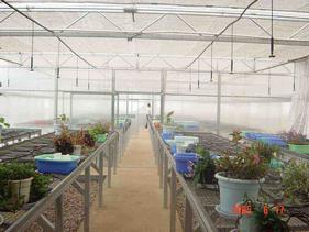 温室大棚、喷灌、滴灌设计施工