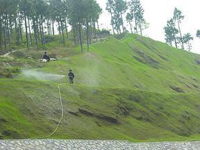矿区边坡绿化工程