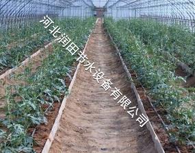 定兴县灌溉软带 保定市蔬菜膜下滴灌厂家