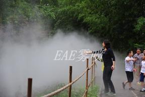 EAE雾森设备