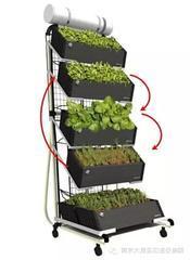 阳台种植器具