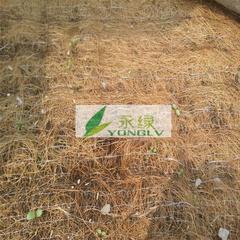 供应植物纤维毯,厂家直销椰丝植草毯,边坡绿化防护环保植被毯