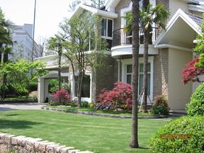 庭院设计,庭院造景,绿化施工