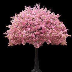 生产直销玻璃杆仿真樱花树  室内仿真樱花树大量订做