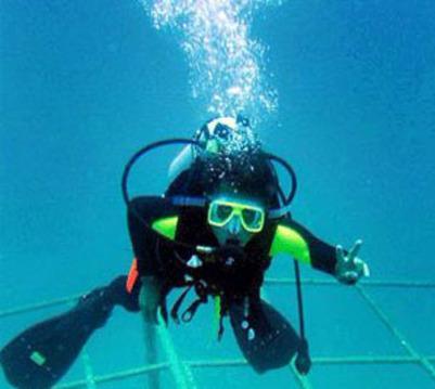 壁纸 海底 海底世界 海洋馆 水族馆 401_359